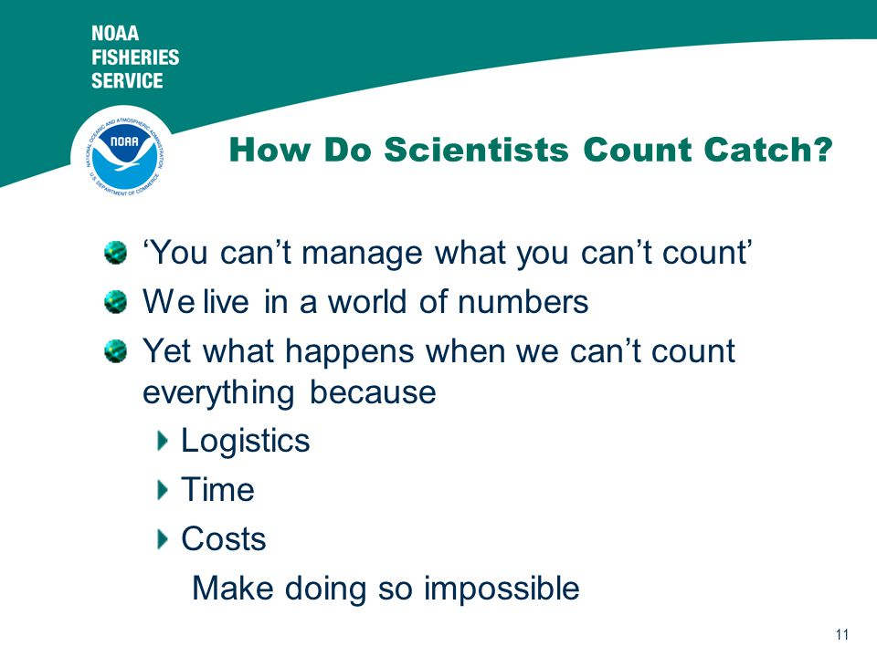 11 How Do Scientists Count Catch.