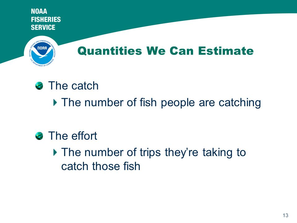 13 Quantities We Can Estimate The catch The number of fish people are catching The effort The number of trips they're taking to catch those fish