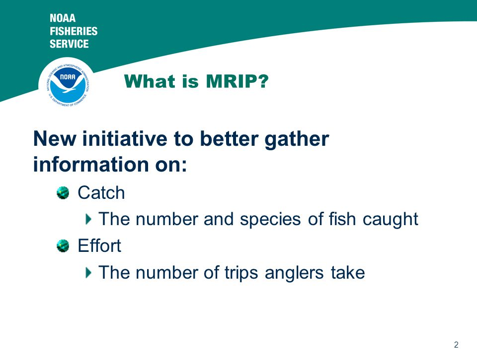 2 What is MRIP? New initiative to better gather information on: Catch The number and species of fish caught Effort The number of trips anglers take
