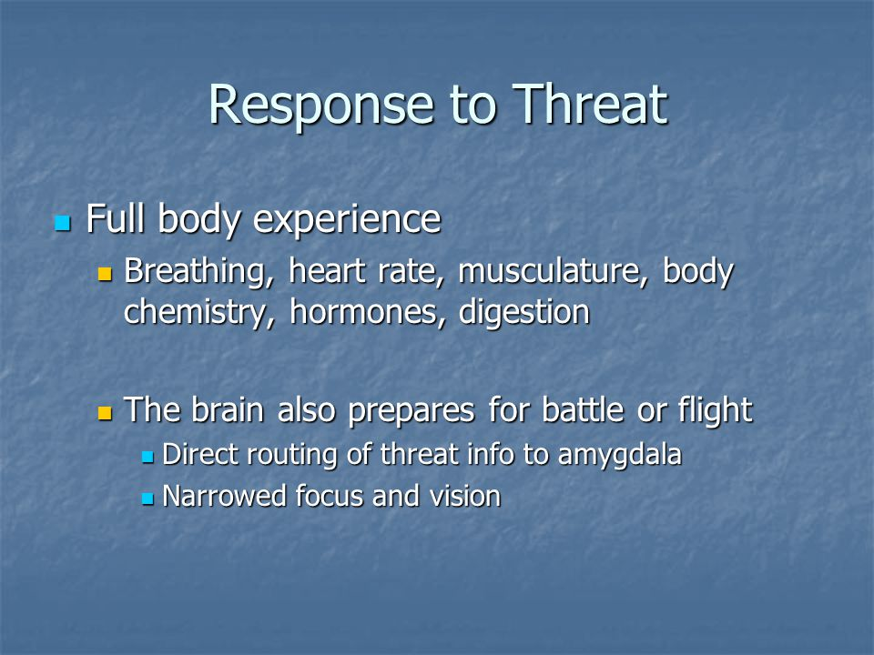 Response to Threat Full body experience Full body experience Breathing, heart rate, musculature, body chemistry, hormones, digestion Breathing, heart rate, musculature, body chemistry, hormones, digestion The brain also prepares for battle or flight The brain also prepares for battle or flight Direct routing of threat info to amygdala Direct routing of threat info to amygdala Narrowed focus and vision Narrowed focus and vision