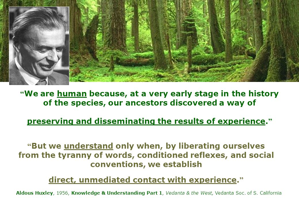 John Dewey – Experiential learning as a cyclic process: impulse, observation, knowledge and judgment Because it's a three-week project, and because students reflect on and then write about their progress every week, it becomes a cyclic process.