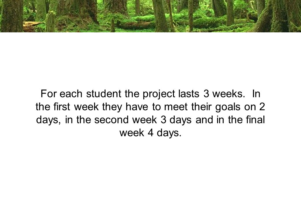 For each student the project lasts 3 weeks.
