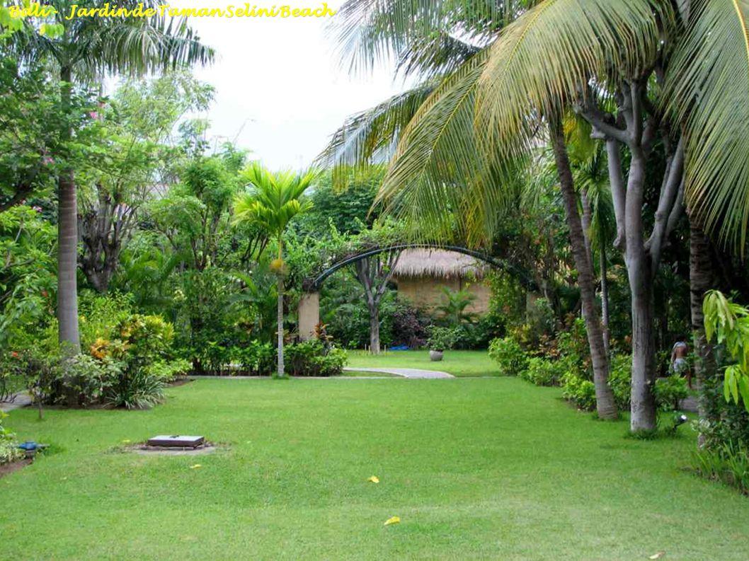 Bali - Lake Buyan