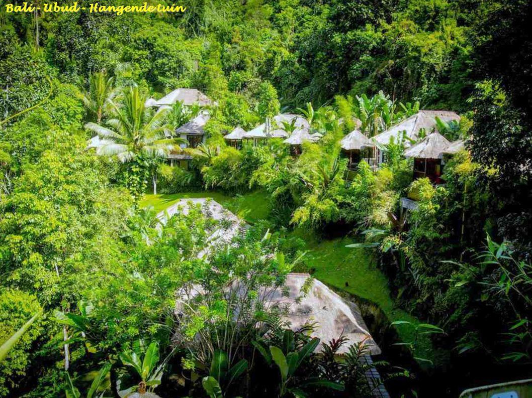 Bali - Pura Beji