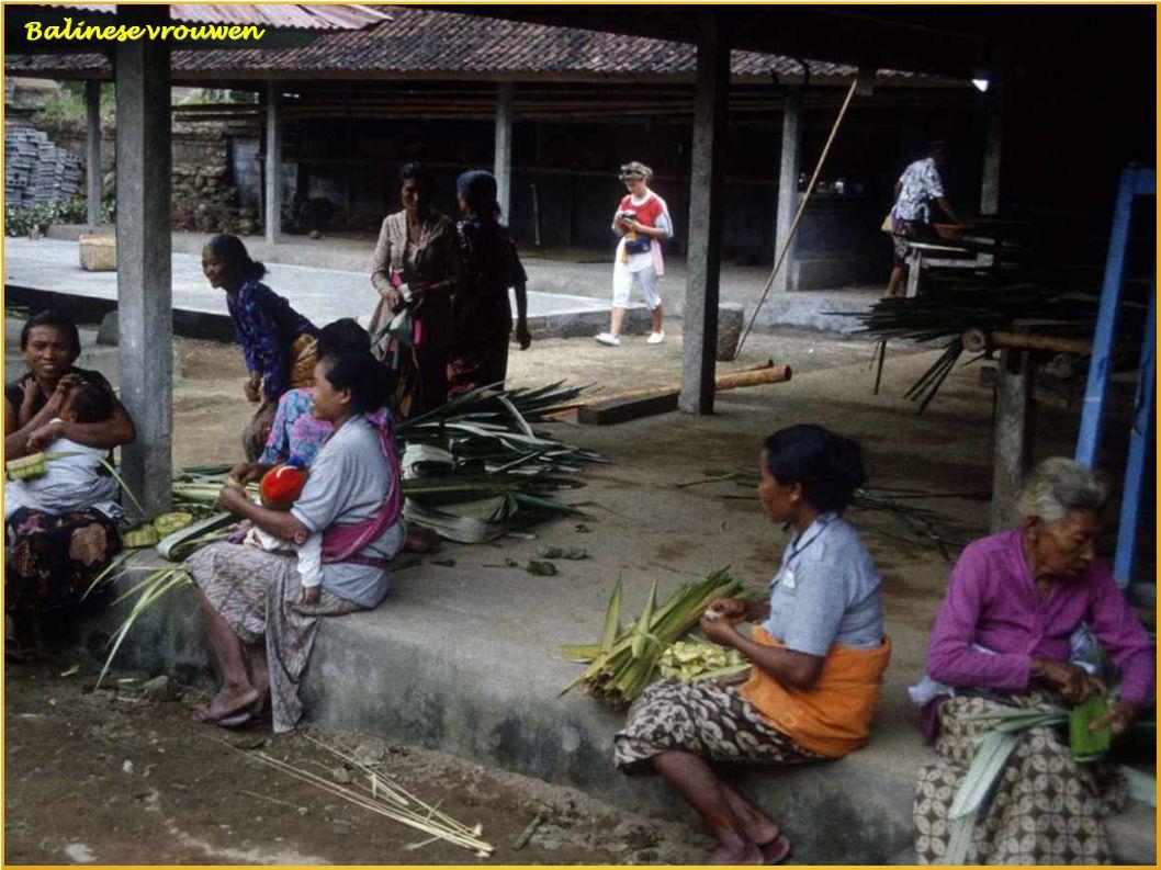 Balinese dansgroep Balinese dansgroep Balinese kat