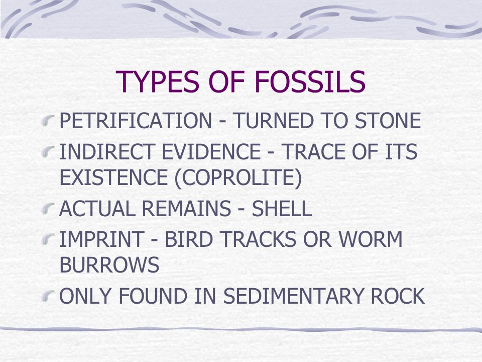 TYPES OF FOSSILS PETRIFICATION - TURNED TO STONE INDIRECT EVIDENCE - TRACE OF ITS EXISTENCE (COPROLITE) ACTUAL REMAINS - SHELL IMPRINT - BIRD TRACKS OR WORM BURROWS ONLY FOUND IN SEDIMENTARY ROCK