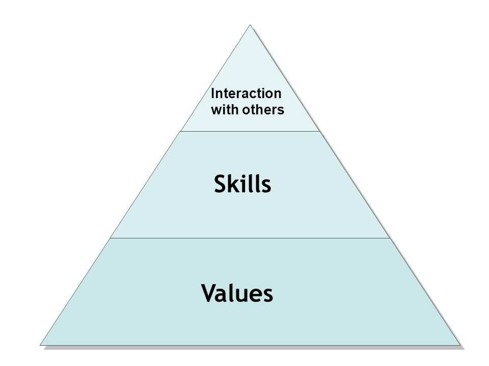Skills Values Interaction with others