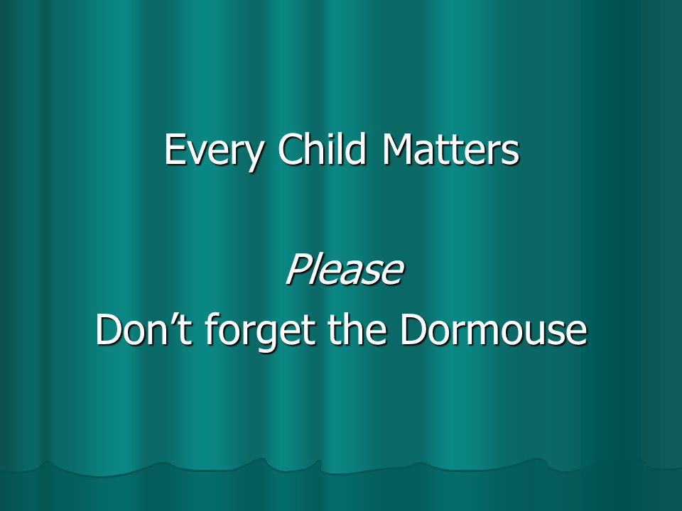 Every Child Matters Please Don't forget the Dormouse