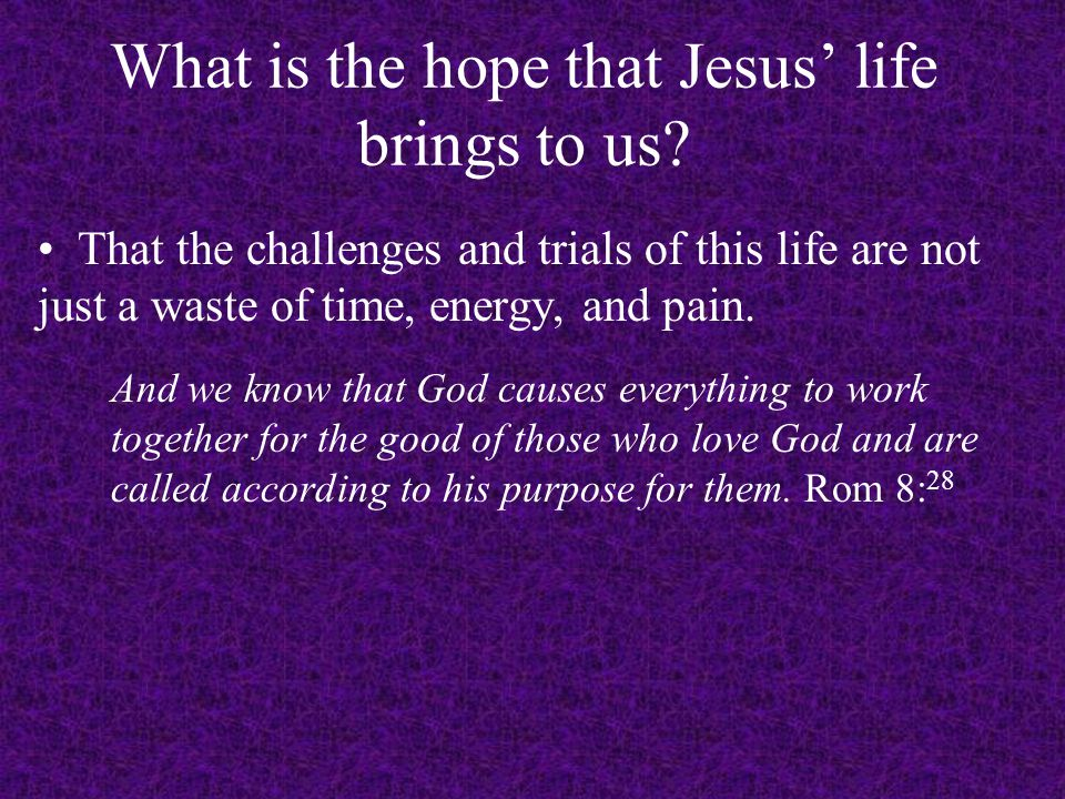 What is the hope that Jesus' life brings to us.