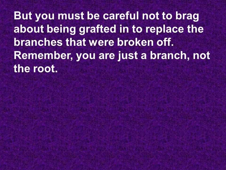 But you must be careful not to brag about being grafted in to replace the branches that were broken off.
