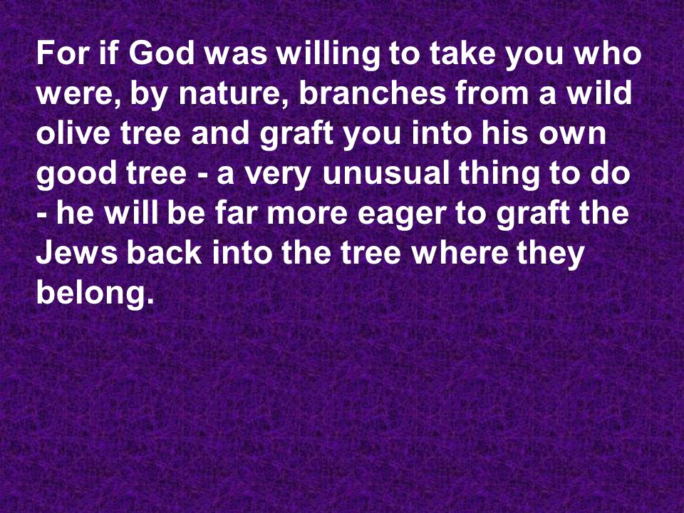For if God was willing to take you who were, by nature, branches from a wild olive tree and graft you into his own good tree - a very unusual thing to do - he will be far more eager to graft the Jews back into the tree where they belong.