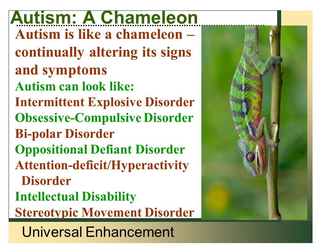 Universal Enhancement Autism: A Chameleon Autism is like a chameleon – continually altering its signs and symptoms Autism can look like: Intermittent