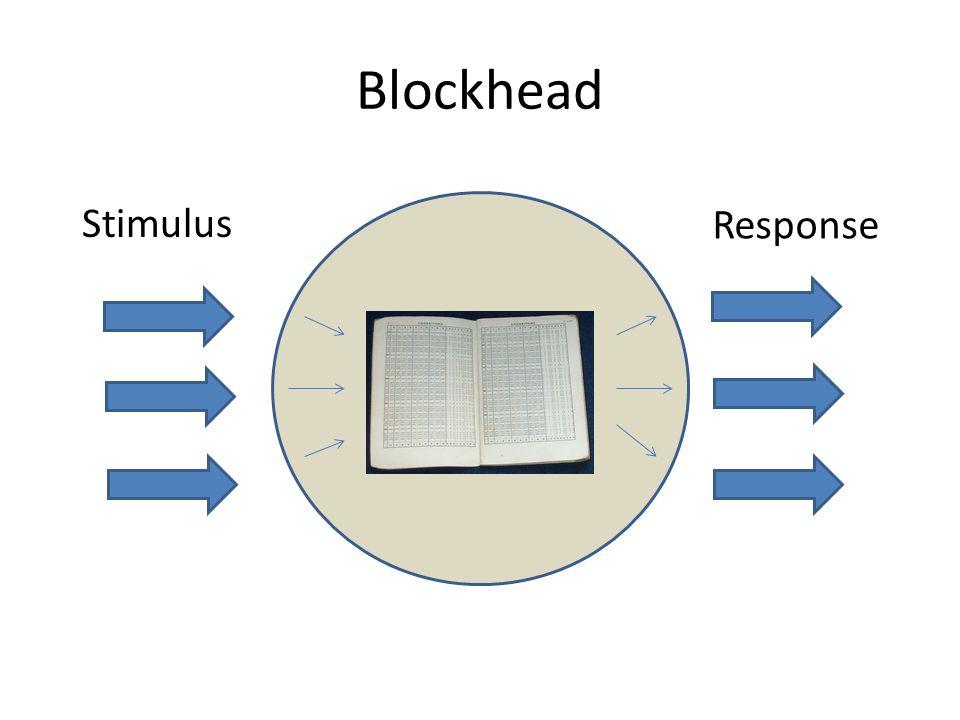 Blockhead Stimulus Response