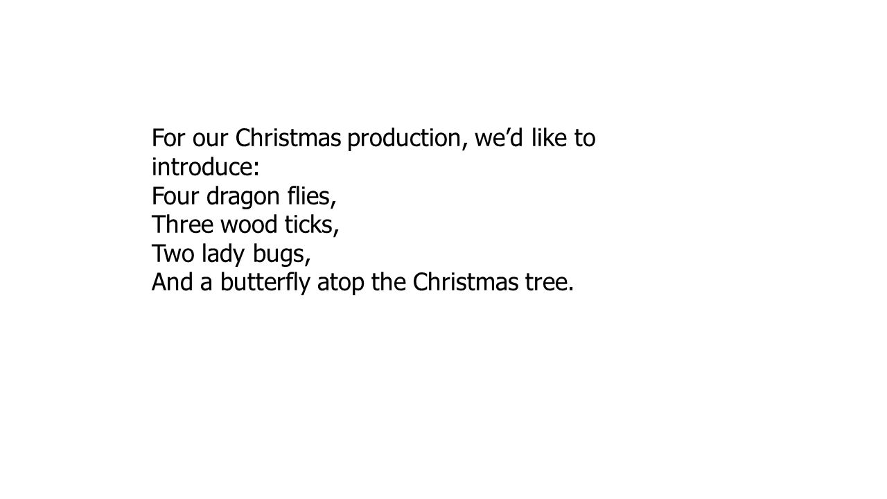 For our Christmas production, we'd like to introduce: Four dragon flies, Three wood ticks, Two lady bugs, And a butterfly atop the Christmas tree.