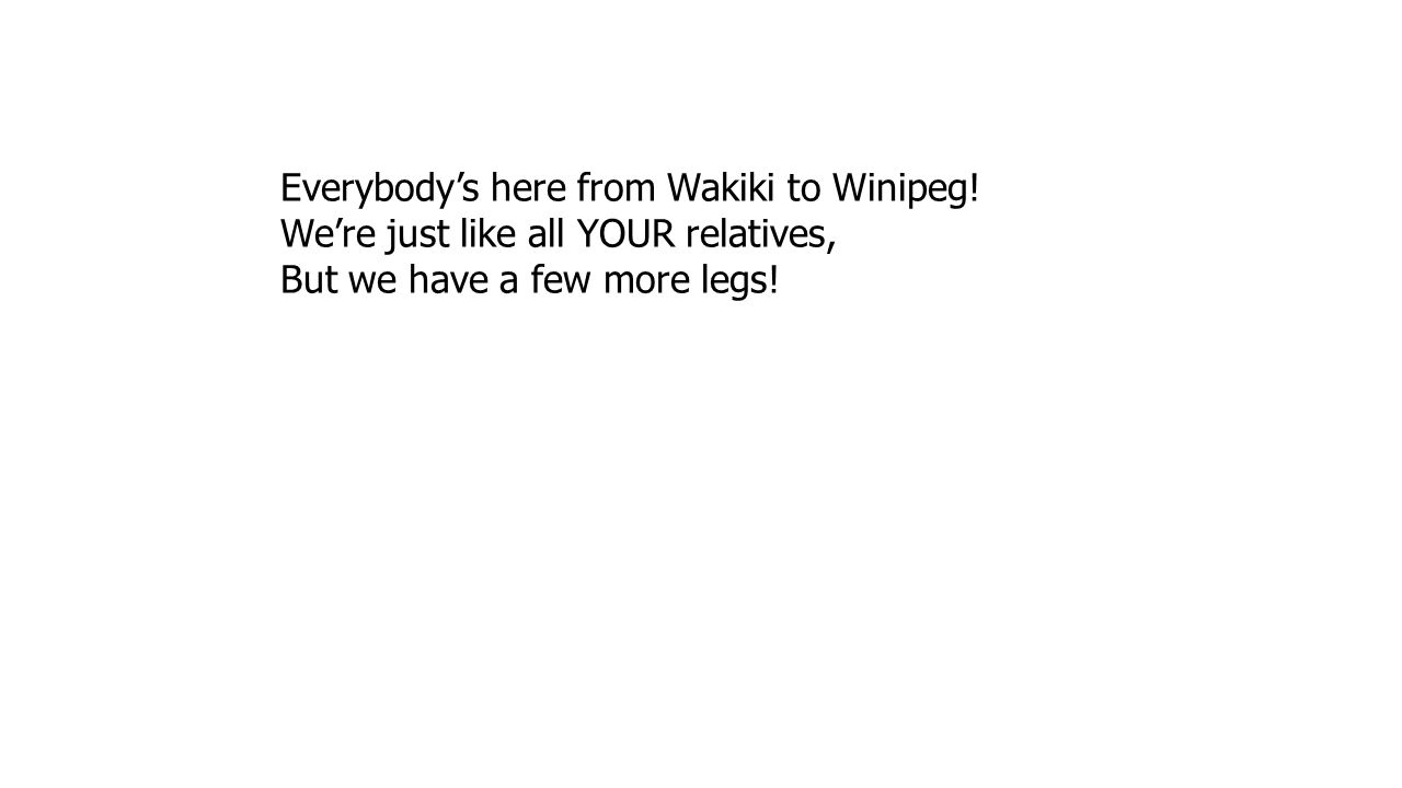 Everybody's here from Wakiki to Winipeg! We're just like all YOUR relatives, But we have a few more legs!