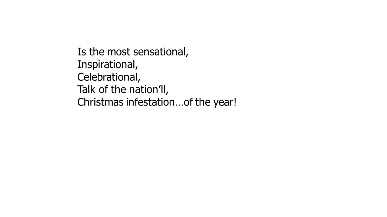 Is the most sensational, Inspirational, Celebrational, Talk of the nation'll, Christmas infestation…of the year!