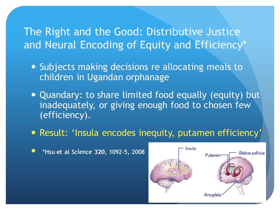 The Right and the Good: Distributive Justice and Neural Encoding of Equity and Efficiency* Subjects making decisions re allocating meals to children i