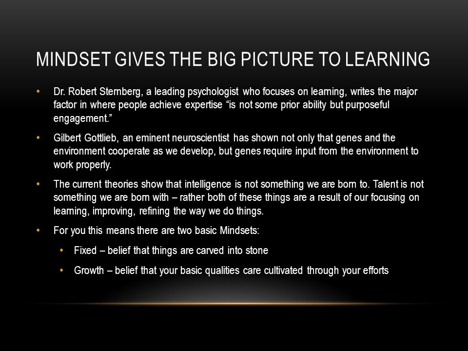 MINDSET GIVES THE BIG PICTURE TO LEARNING Dr.
