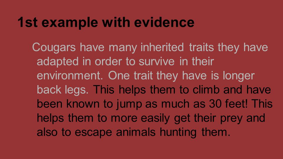 1st example with evidence Cougars have many inherited traits they have adapted in order to survive in their environment. One trait they have is longer