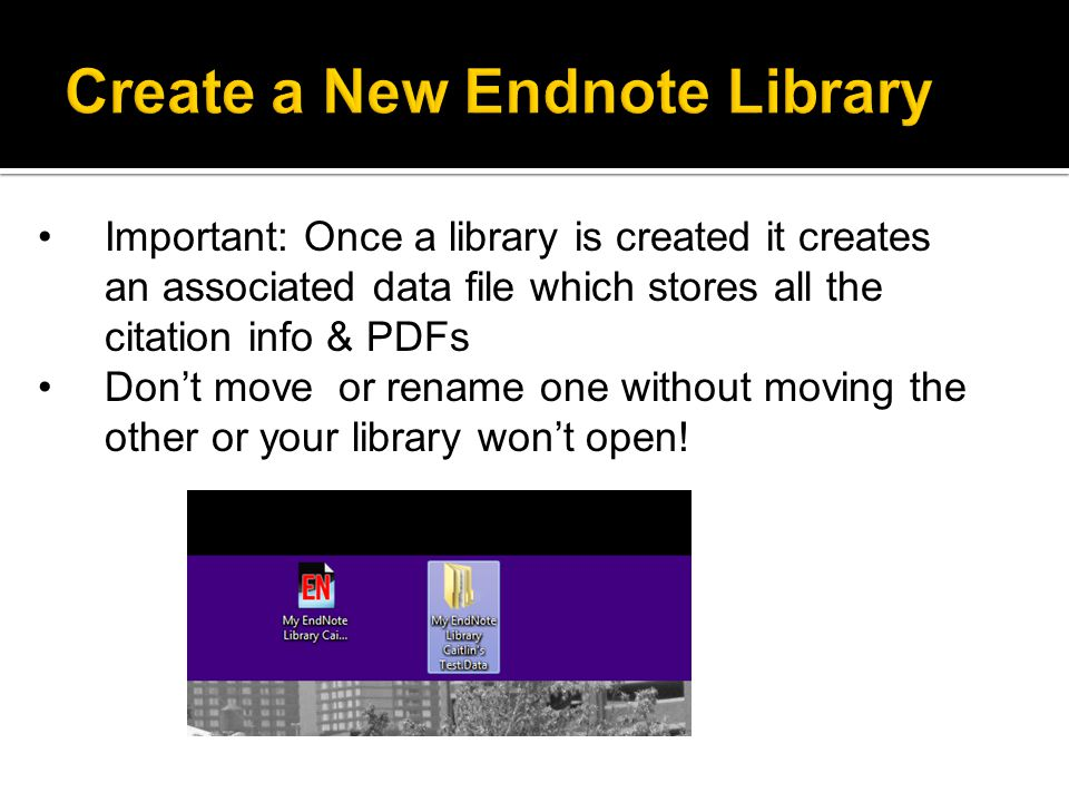 Your new library will open, ready to enter citations.