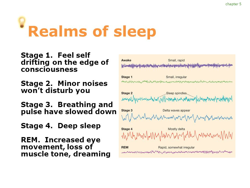 Realms of sleep Stage 1. Feel self drifting on the edge of consciousness Stage 2. Minor noises won't disturb you Stage 3. Breathing and pulse have slo
