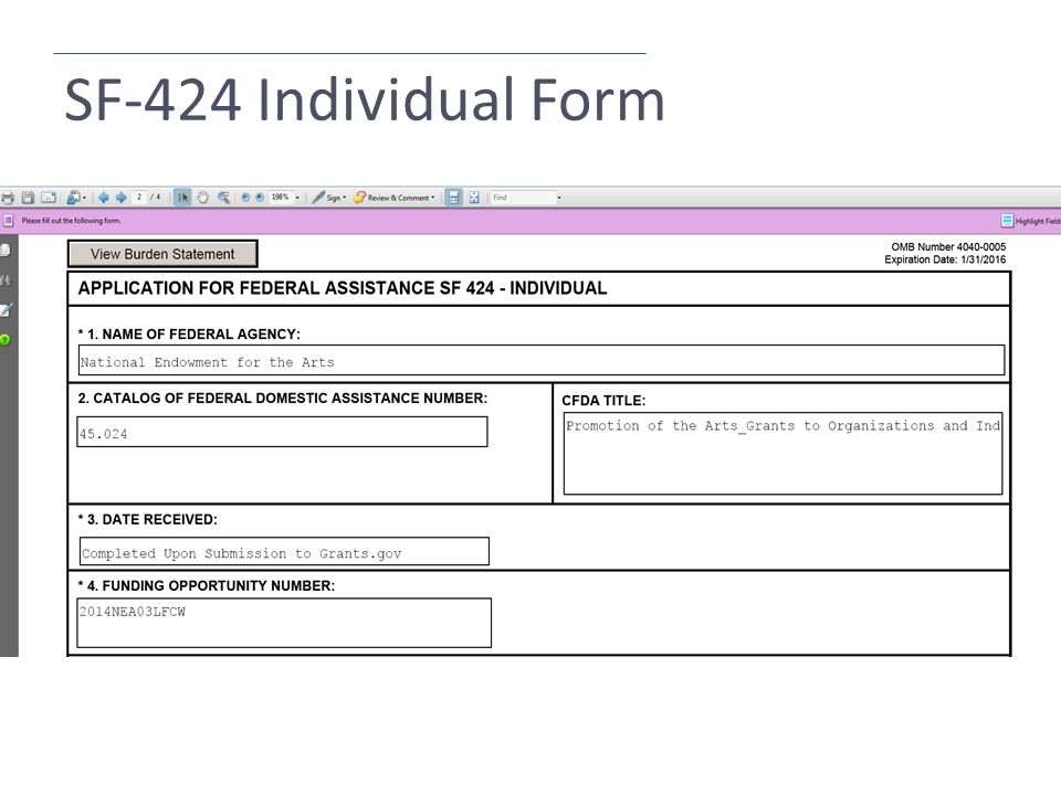 SF-424 Individual Form