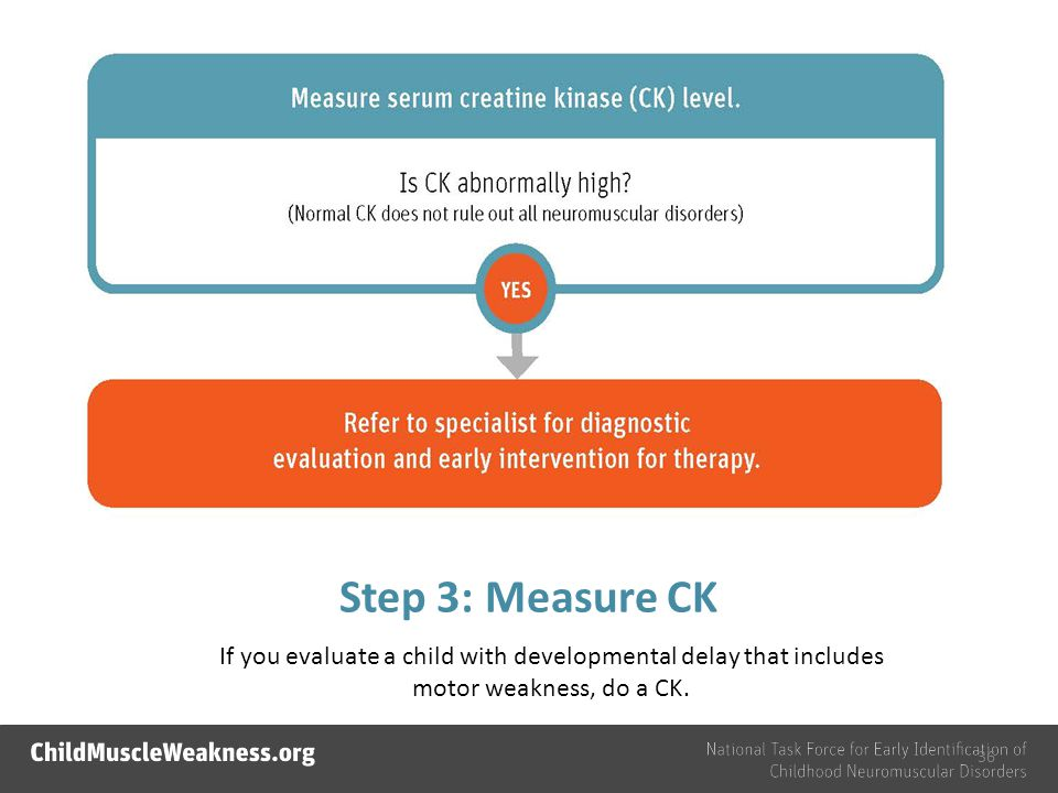 Step 3: Measure CK If you evaluate a child with developmental delay that includes motor weakness, do a CK.