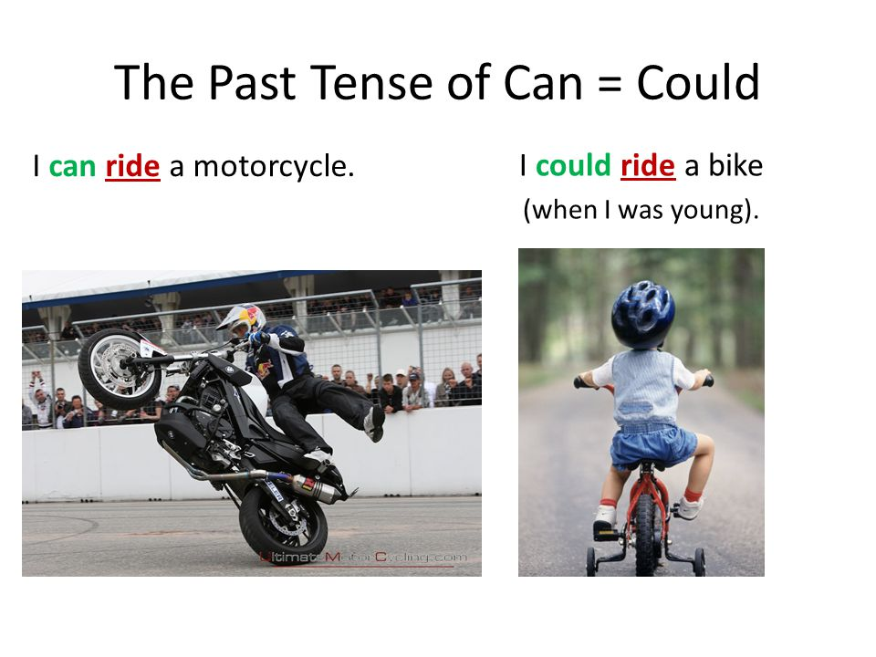 Modals: Past Tense Can, Could, Will, Would, Should
