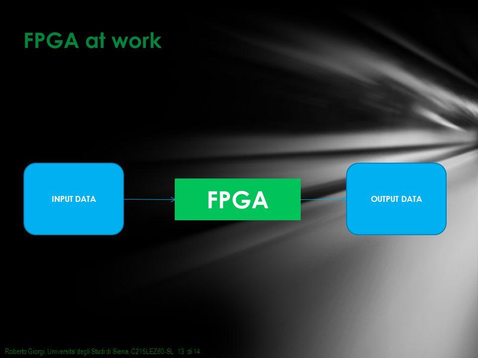 FPGA at work Roberto Giorgi, Universita degli Studi di Siena, C215LEZ60-SL di 1413 FPGA INPUT DATAOUTPUT DATA