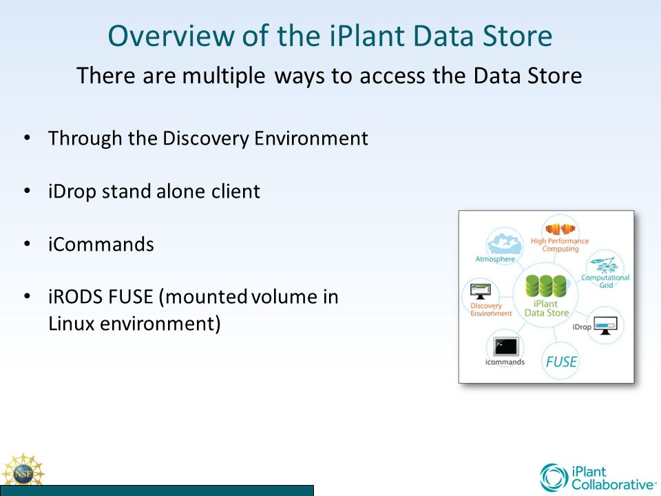 Overview of the iPlant Data Store There are multiple ways to access the Data Store Through the Discovery Environment iDrop stand alone client iCommands iRODS FUSE (mounted volume in Linux environment)