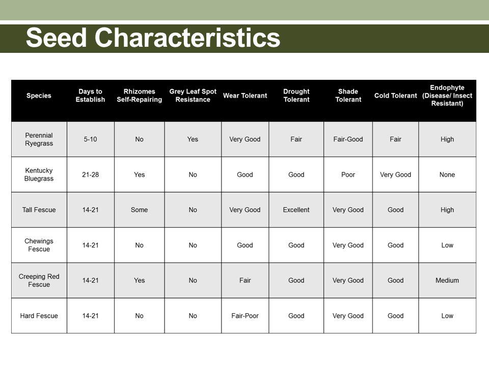 Seed Characteristics