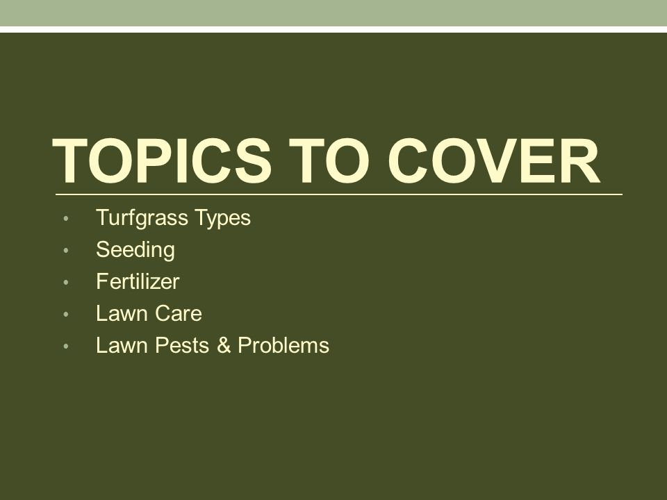 TOPICS TO COVER Turfgrass Types Seeding Fertilizer Lawn Care Lawn Pests & Problems