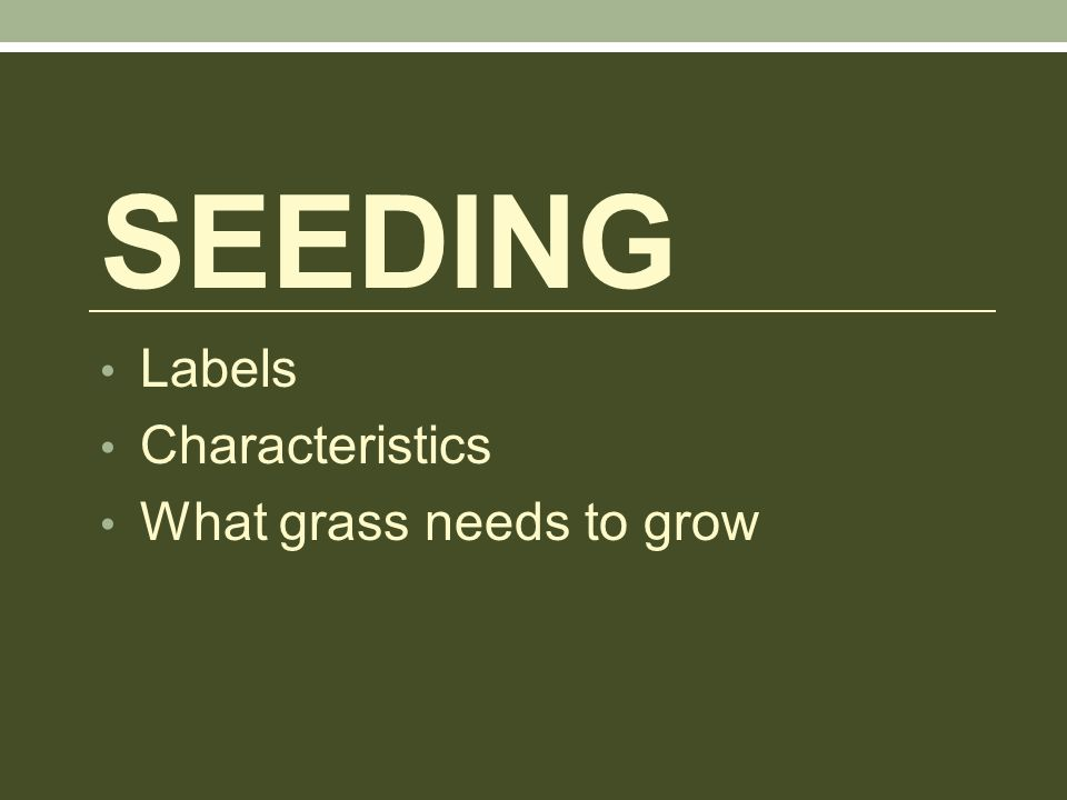 SEEDING Labels Characteristics What grass needs to grow