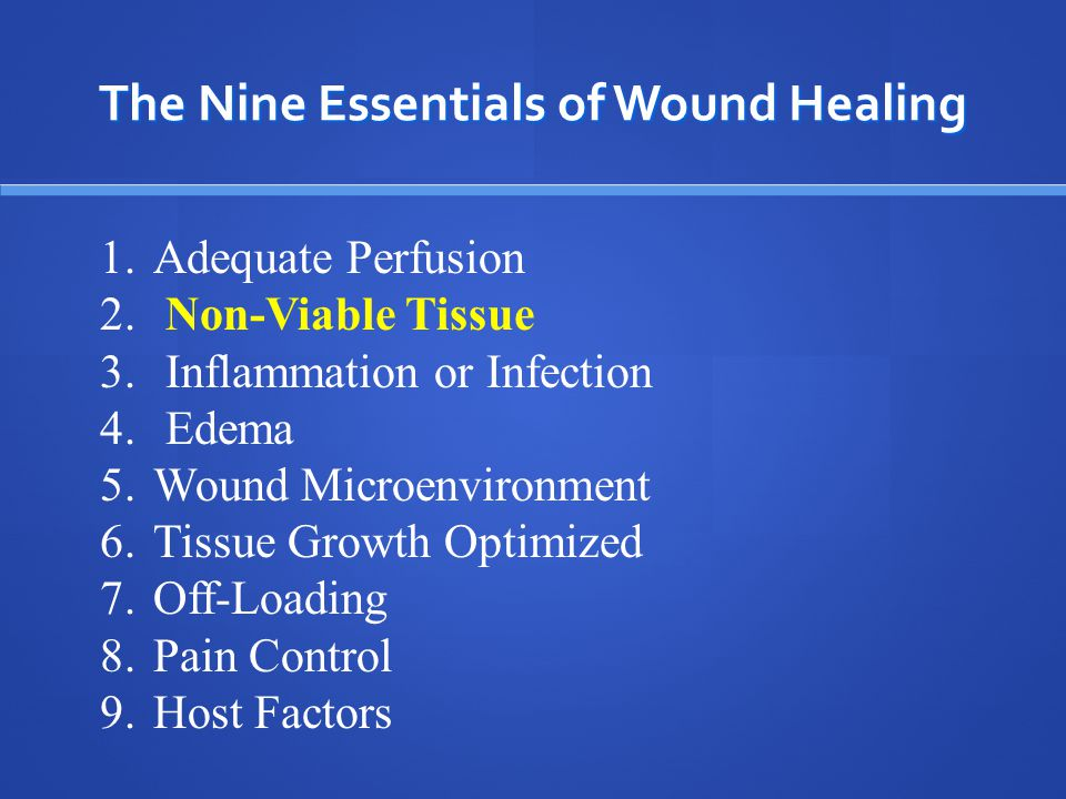 If you can't get water to the garden……the garden won't grow!!!! The Nine Essentials of Wound Healing