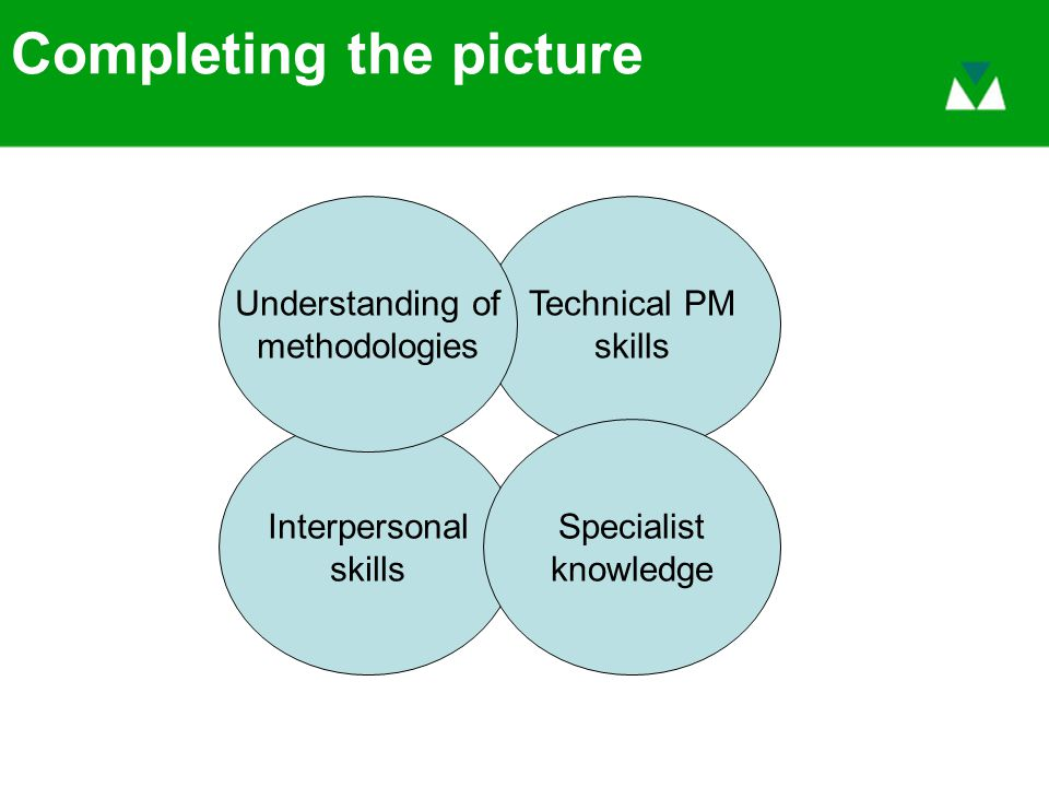 Completing the picture Interpersonal skills Technical PM skills Understanding of methodologies Specialist knowledge