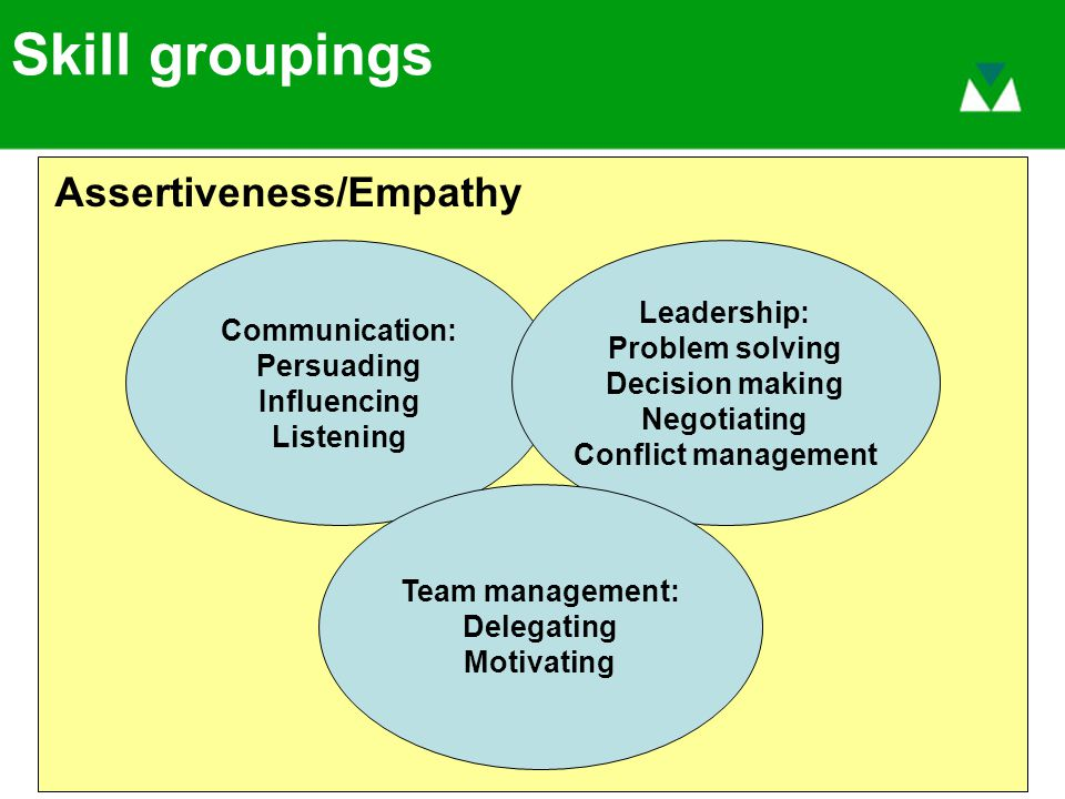 Skill groupings Communication: Persuading Influencing Listening Leadership: Problem solving Decision making Negotiating Conflict management Team management: Delegating Motivating Assertiveness/Empathy