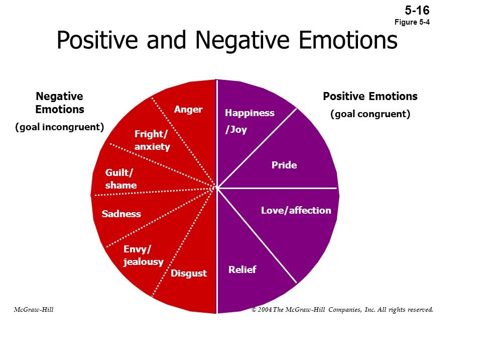 Positive and Negative Emotions Happiness /Joy Pride Love/affection Relief Anger Fright/ anxiety Guilt/ shame Sadness Envy/ jealousy Disgust Negative E