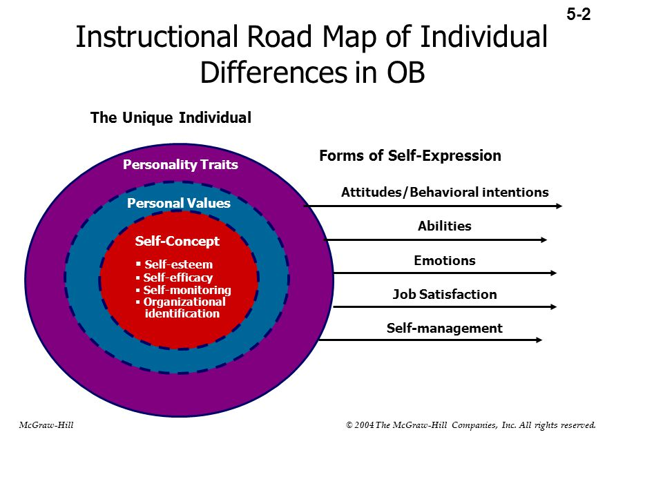 Instructional Road Map of Individual Differences in OB Personality Traits Personal Values Self-Concept  Self-esteem  Self-efficacy  Self-monitoring  Organizational identification The Unique Individual Forms of Self-Expression Attitudes/Behavioral intentions Abilities Emotions Job Satisfaction Self-management 5-2 McGraw-Hill © 2004 The McGraw-Hill Companies, Inc.