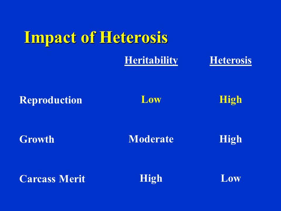 Impact of Heterosis Reproduction Growth Carcass Merit Heritability Low Moderate High Heterosis High Low