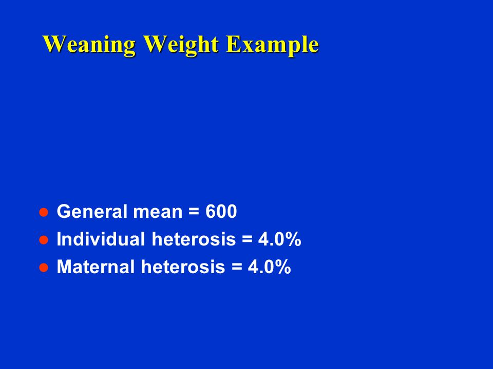 Weaning Weight Example General mean = 600 Individual heterosis = 4.0% Maternal heterosis = 4.0%
