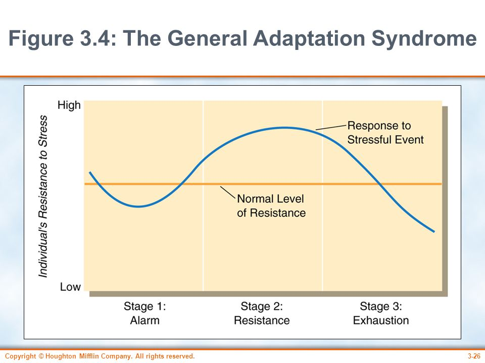 Copyright © Houghton Mifflin Company. All rights reserved.3-26 Figure 3.4: The General Adaptation Syndrome