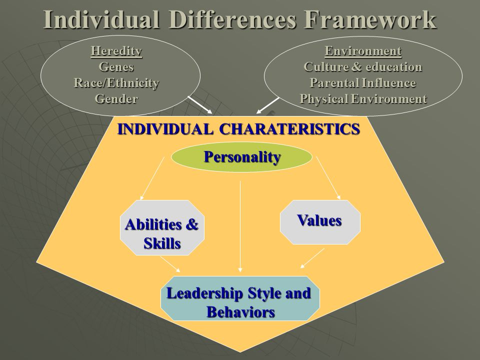 Individual Differences Framework Personality Leadership Style and Behaviors Abilities & Skills Values Environment Culture & education Parental Influen