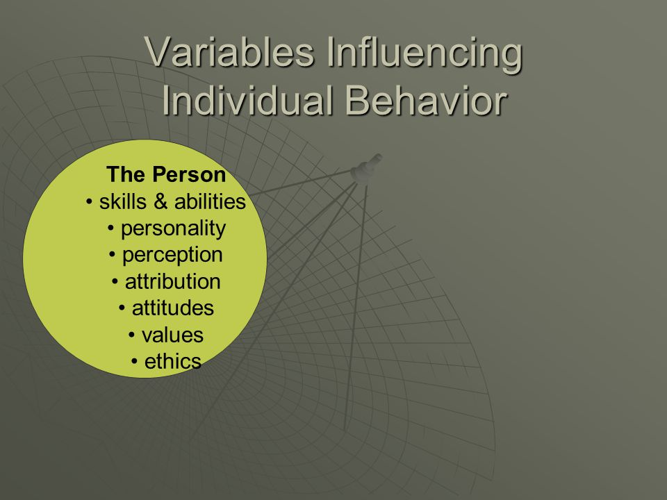 Variables Influencing Individual Behavior The Person skills & abilities personality perception attribution attitudes values ethics