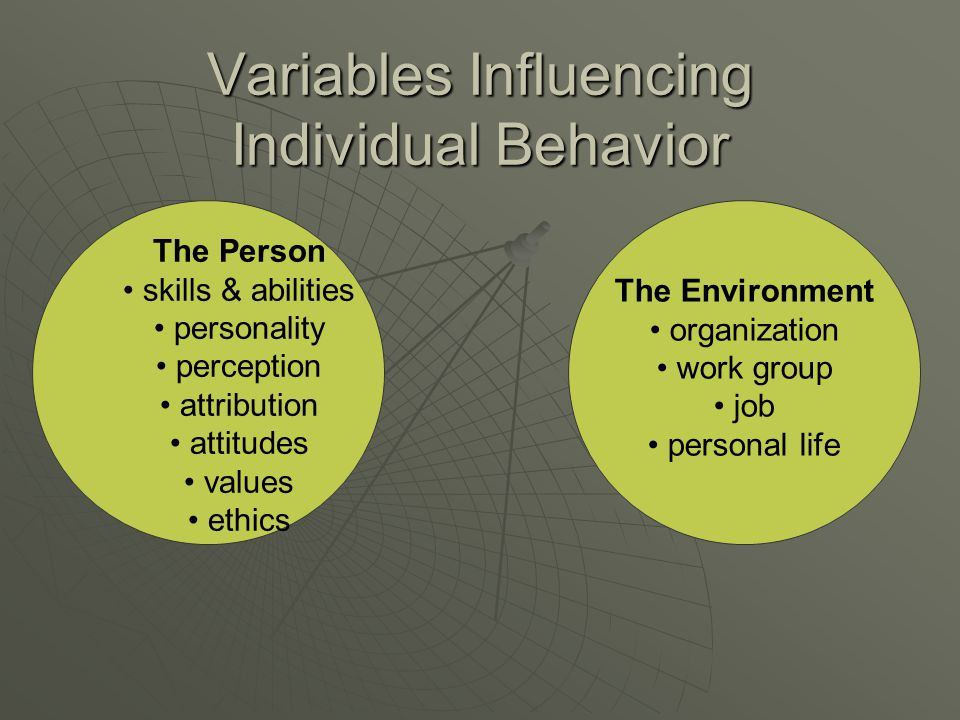Variables Influencing Individual Behavior The Person skills & abilities personality perception attribution attitudes values ethics The Environment org
