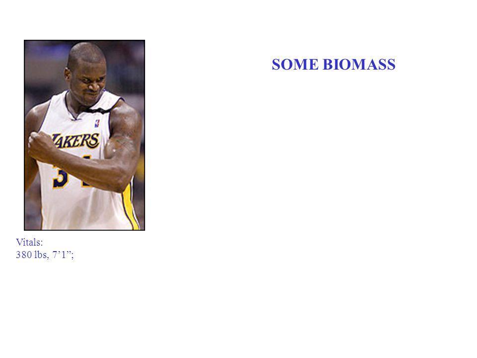 "Vitals: 380 lbs, 7'1""; SOME BIOMASS"