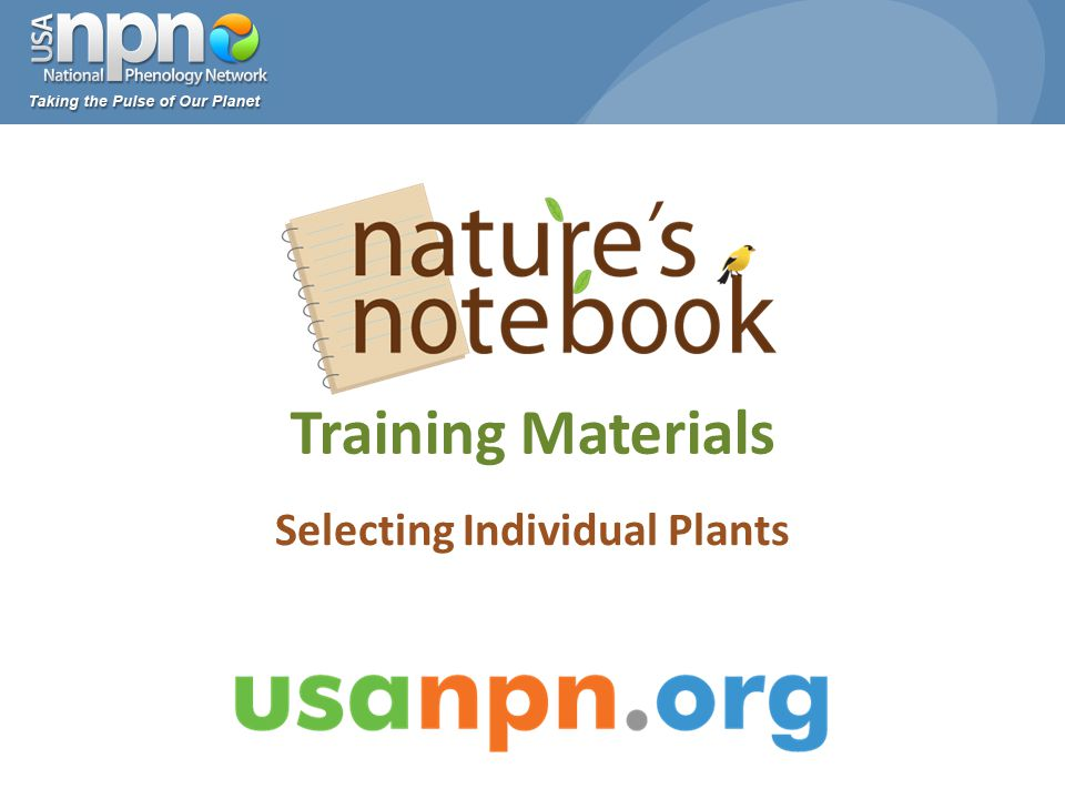 Training Materials Selecting Individual Plants