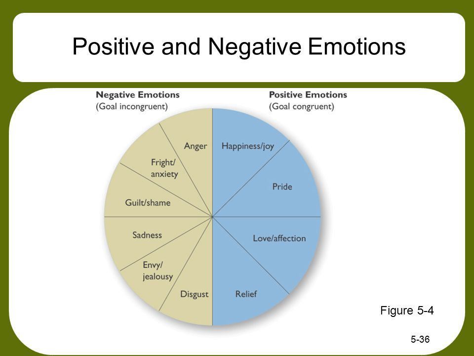 5-36 Positive and Negative Emotions Figure 5-4