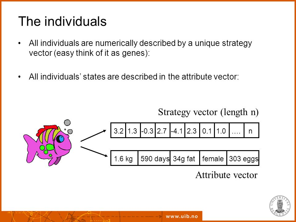 The individuals All individuals are numerically described by a unique strategy vector (easy think of it as genes): All individuals' states are described in the attribute vector: Strategy vector (length n) 3.2 1.3 -0.3 2.7 -4.1 2.3 0.1 1.0 ….