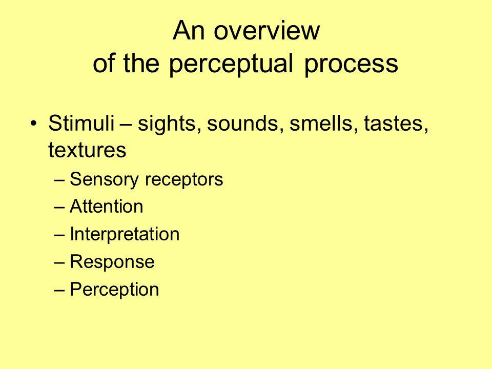 An overview of the perceptual process Stimuli – sights, sounds, smells, tastes, textures –Sensory receptors –Attention –Interpretation –Response –Perception