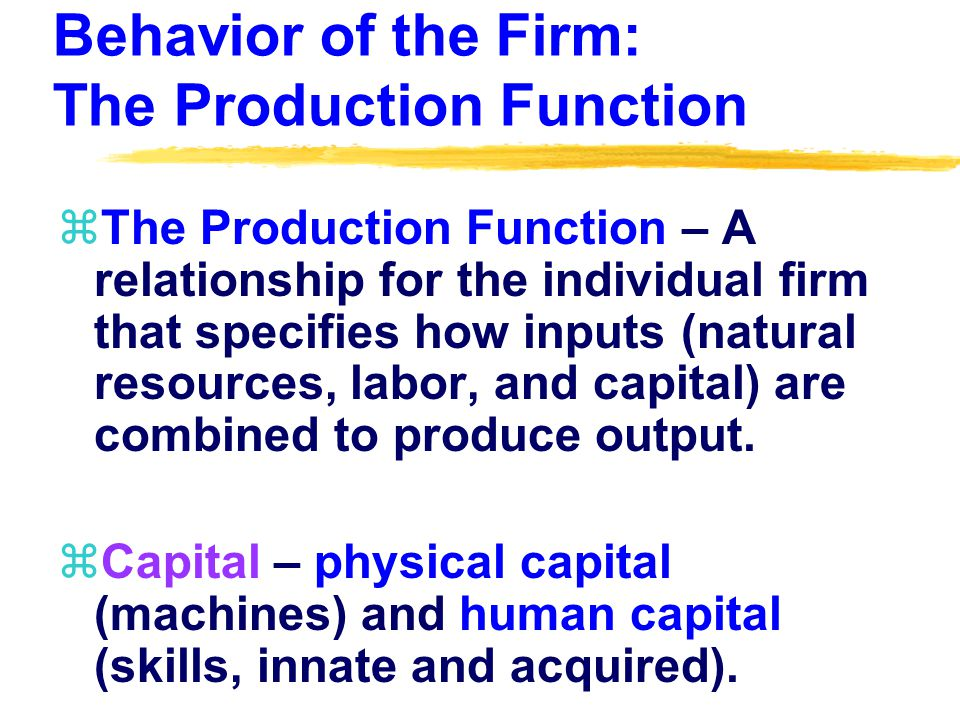 Behavior of the Firm: The Production Function zThe Production Function – A relationship for the individual firm that specifies how inputs (natural resources, labor, and capital) are combined to produce output.